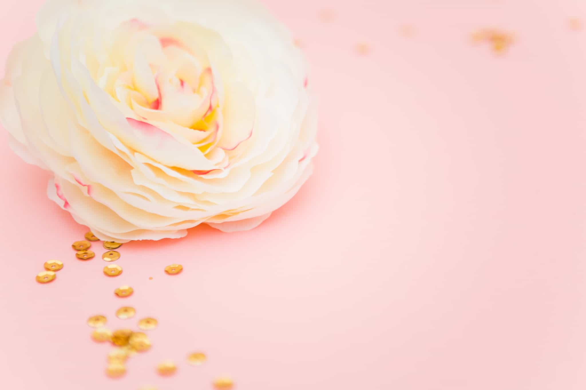 free resources event suppliers photographers florist